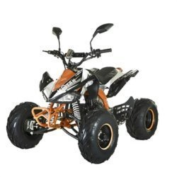 Квадроцикл подростковый бензиновый MOTAX ATV T-Rex-LUX 125 сс (пульт контроля, до 65 км/ч)