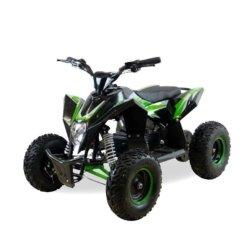 Детский квадроцикл на аккумуляторе Motax GEKKON 1300W черно- зеленый (пульт контроля, до 38 км/ч)